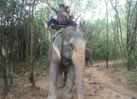 국내여행 경비로 해외를... 소중한 인연과 동물들의 천국 파타야