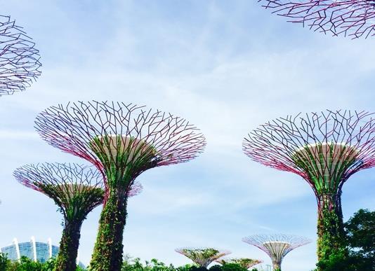 낮보다 아름다운 싱가포르의 야경을 담아