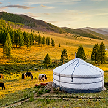 [끝없는 초원, 쏟아지는 별] 몽골-울란바토르+테를지 5일_대한항공