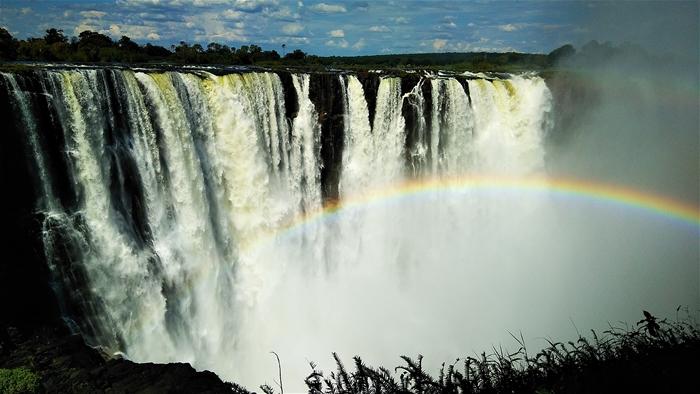 야생과 아름다움의 아프리카 여행