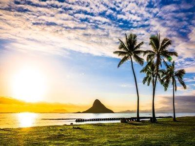 [우리가족 가볍게 하와이로!]와이키키 비치 메리어트 하와이 6일/7일