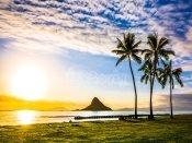하와이메인