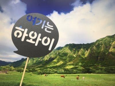 [참좋은여행 단독, Best 상품] 오아후섬/쿠알로아목장 6일/7일