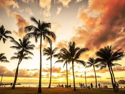 [조금 더 특별한 하와이 일정] 카할라 호텔에서 브런치까지, 여유롭게 즐기는 하와이