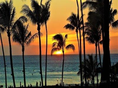 여행후기가 증명하는 믿고가는 참좋은여행 미서부/하와이 일주