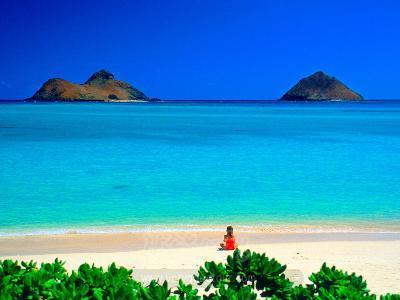 ▶9/27 마우이 데이투어 무료포함◀ [실속파의 선택/일급 호텔] 365일 따뜻한 그 곳, 하와이 [오아후 섬일주] 6일/7일