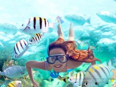 ▶칸쿤 관광+휴양◀ [Hyatt Ziva Cancun] 정글투어 + 셀하 관광 포함