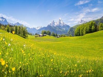 3개국만 여유롭게 여행하며,  비엔나와 프라하에서는 나만의 자유시간을 갖는 여행
