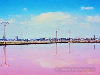 【유럽 유일의 타베르나스 사막+토레비에하 핑크 호수】 색(色)  다른 스페인 일주 8/9일