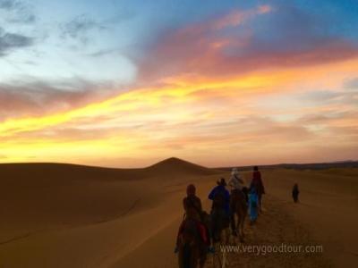 일출/사파리 투어/엘 바디 궁전/바히아 궁전/셔프샤우엔/사하라 사막 자유시간