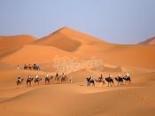 메르조가 사막