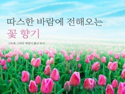 □ 녹음가득한 여름의 북규슈 관광 / 시내1박+온천1박