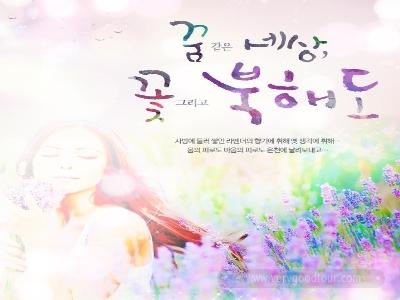 [꿈 같은 세상, 꽃 그리고 북해도] 북해도 핵심일주 + 후라노,비에이 + 샤코탄 4일