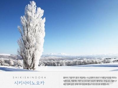 [시리도록 아름다운] 북해도 핵심일주 + 눈의도시 비에이 4일_아시아나
