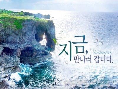 [오키나와3일][준특급호텔 글라스보트체험] 오키나와 3일(1일차 자유일정 선택가능)_티웨이항공