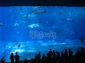 EXPO해양공원
