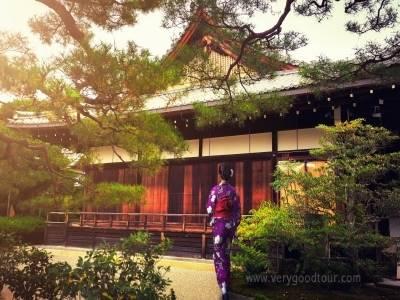 오사카와 규슈를 한번에 즐길 수 있는 상품, 두부나베, 고기뷔페 등 다양한 식사