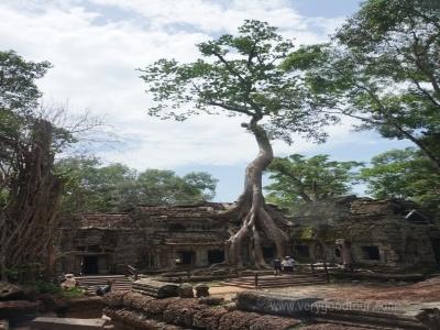 초기 유적지 롤로오스, 반데스레이 그리고 앙코르왓을 함께 관광 할수 있는 상품입니다.