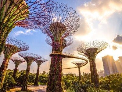 [싱가포르의 모습과 맛을 딱 갓춘] 싱가포르 알짜배기 관광지 둘러보고 바탐에서 여유있게 반나절 휴양