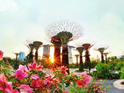 [싱가포르 + 바탐 5일] 싱가포르의 모습과 맛을 갖춘 가든바이더베이+슈퍼트리, 칠리크랩 + 바탐 휴양