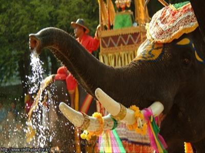 [알뜰족은 모여라] 방콕/파타야+산호섬+알카자쇼+코끼리트래킹+한방안마+로얄드래곤+시푸드 5일