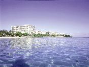 힐튼 호텔