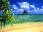 오아후섬 1